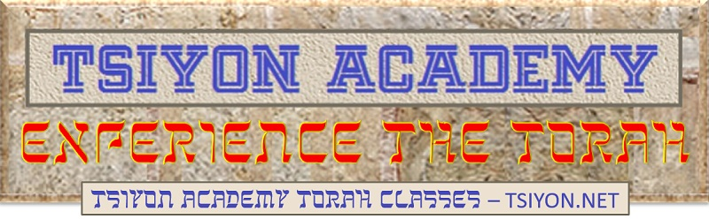 Tsiyon Academy Experience the Torah Free Scholarship to Online Course